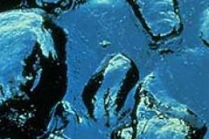 Разлив нефтепродуктов у берегов Норвегии угрожает экологии в регионе