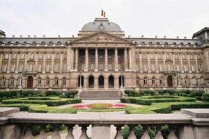 Политический кризис в Бельгии может нанести ущерб евроинтеграции – король