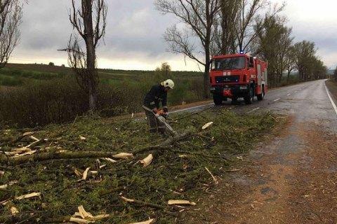 В Закарпатской области из-за сильного ветра обесточены 11 населенных пунктов
