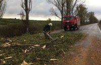 У Закарпатській області через сильний вітер знеструмлено 11 населених пунктів