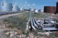 Арестованную Херсонскую нефтеперевалку продали за 200 млн гривен