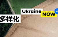 МЗС запустило версію сайту України китайською