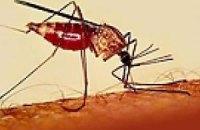 В Кировограде уже у шести человек подозревают тропическую малярию