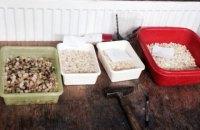 В Ровенской области нашли подпольный цех со 100 кг янтаря