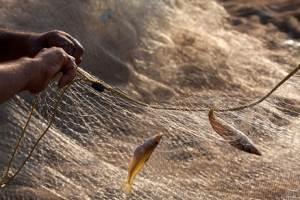 На Одесчине рыбак выловил сетями гранатомет
