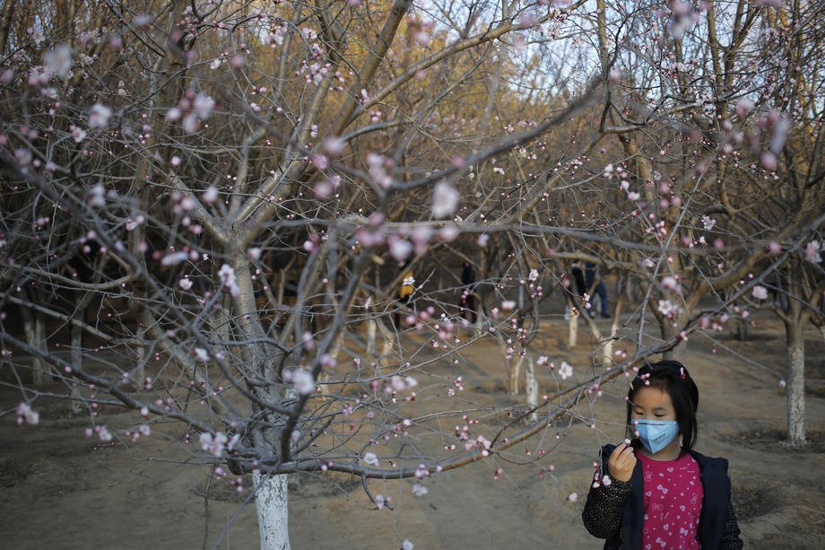 Весна пришла в Олимпийский парк Пекина, 15 марта 2020 .