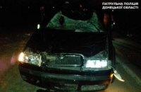 На трасі під Маріуполем автомобіль збив насмерть коня