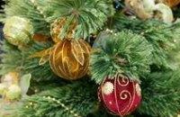 В Днепропетровске дети смогут «разорить елку»
