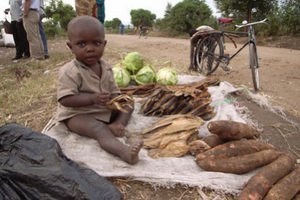 Число людей, голодающих в странах Африканского Рога, достигло 12,4 млн человек
