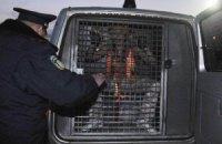 МИД не видит оснований реагировать на инцидент с FEMEN в Беларуси