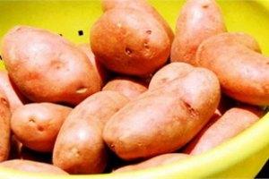 Картофель снижает кровяное давление, - медики
