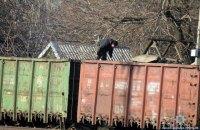 """На ж\д станции """"Покровск"""" на протяжении года тоннами воровали уголь"""