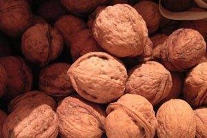 Двоє українців намагалися вивезти до Росії більш ніж 2 тонни горіхів