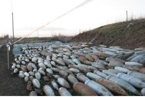 ГосЧС с июля обезвредила 9,3 тыс. боеприпасов в Славянске