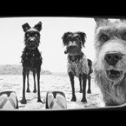 """Берлінале-2018: """"Острів собак"""", бібліофіли і параноя"""