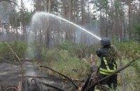 Пожар в заминированном лесу под Станицей Луганской потушили