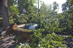 У Києві оголошено штормове попередження