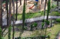 Минрегион намерен изменить нормы высадки и полива деревьев в городах