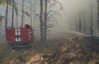 На Луганщині спалахнула лісова пожежа