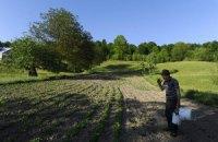 Київрада видала земельні ділянки 23 сім'ям героїв Небесної Сотні