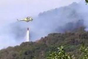 На Канарських островах через пожежі евакуювали тисячі туристів