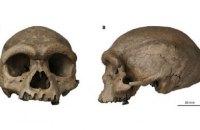 У Китаї знайшли череп раніше невідомого виду людини