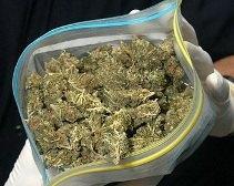 Житель Днепродзержинска пытался вывезти из страны 1 кг марихуаны под видом чая