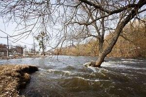 Уровень воды в украинских реках достиг критических отметок