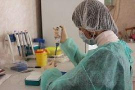 В Ялте обнаружена холера