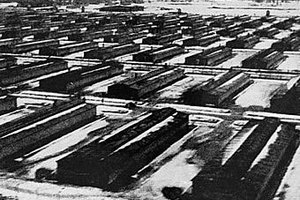 Німеччина буде судити колишнього наглядача Освенциму