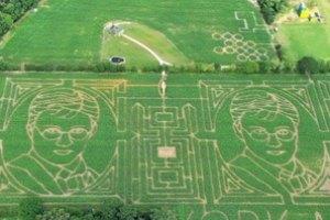 Британский фермер создал кукурузный лабиринт с портретами Гарри Поттера