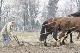 Аграриев лишат налоговых льгот