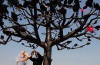 """В Киеве """"посадили"""" Дерево Счастья для молодоженов"""
