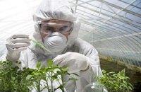 Американці радять Україні звернути увагу на ГМО-культури