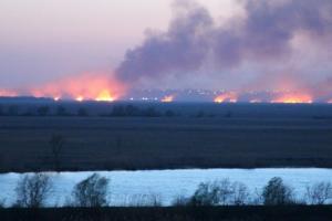 В заповедных плавнях дельты Днестра произошел крупный пожар
