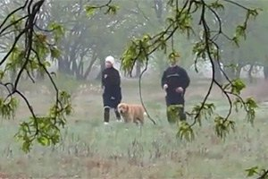 Пробежку Тимошенко сняли на видео
