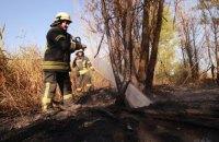 Пожежу на стихійному сміттєзвалищі у Києві ліквідовано