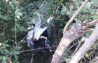 В Черновцах мужчина угнал автомобиль и слетел с моста во время погони