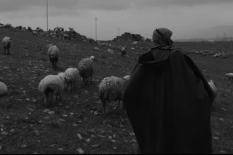 Украинский фильм победил на фестивале документального кино в Италии