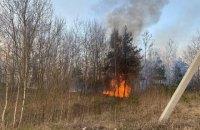 ДСНС про лісові пожежі: якщо так і далі піде, до зими вигорить вся країна