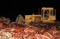 На Кубані бульдозером знищили 38 тонн полуниці з України