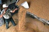 Квоты на экспорт зерна вводить не будут