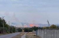 У Донецькій області спалахнула масштабна лісова пожежа