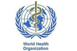 """СМИ: специалисты ВОЗ организовали пандемию """"свиного"""" гриппа ради денег"""