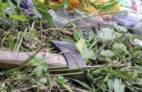 Вони йшли вбивати: що відбувається у Львові після нападу на ромський табір