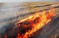 В Днепропетровской области накажут 3-х человек за поджог стерни