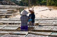 Азию признали главным поставщиком зараженных продуктов