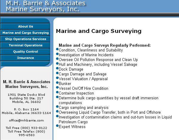 Сайт Барри Майкла не обновлялся семь лет