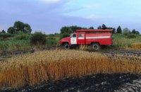 На Чернігівщині згоріли 55 га пшеничного поля