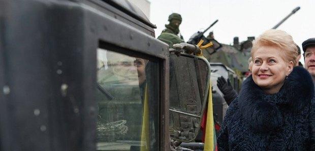 Президент Литвы Даля Грибаускайте во время учений НАТО